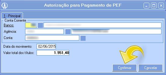 Realizando pagamento do PEF.