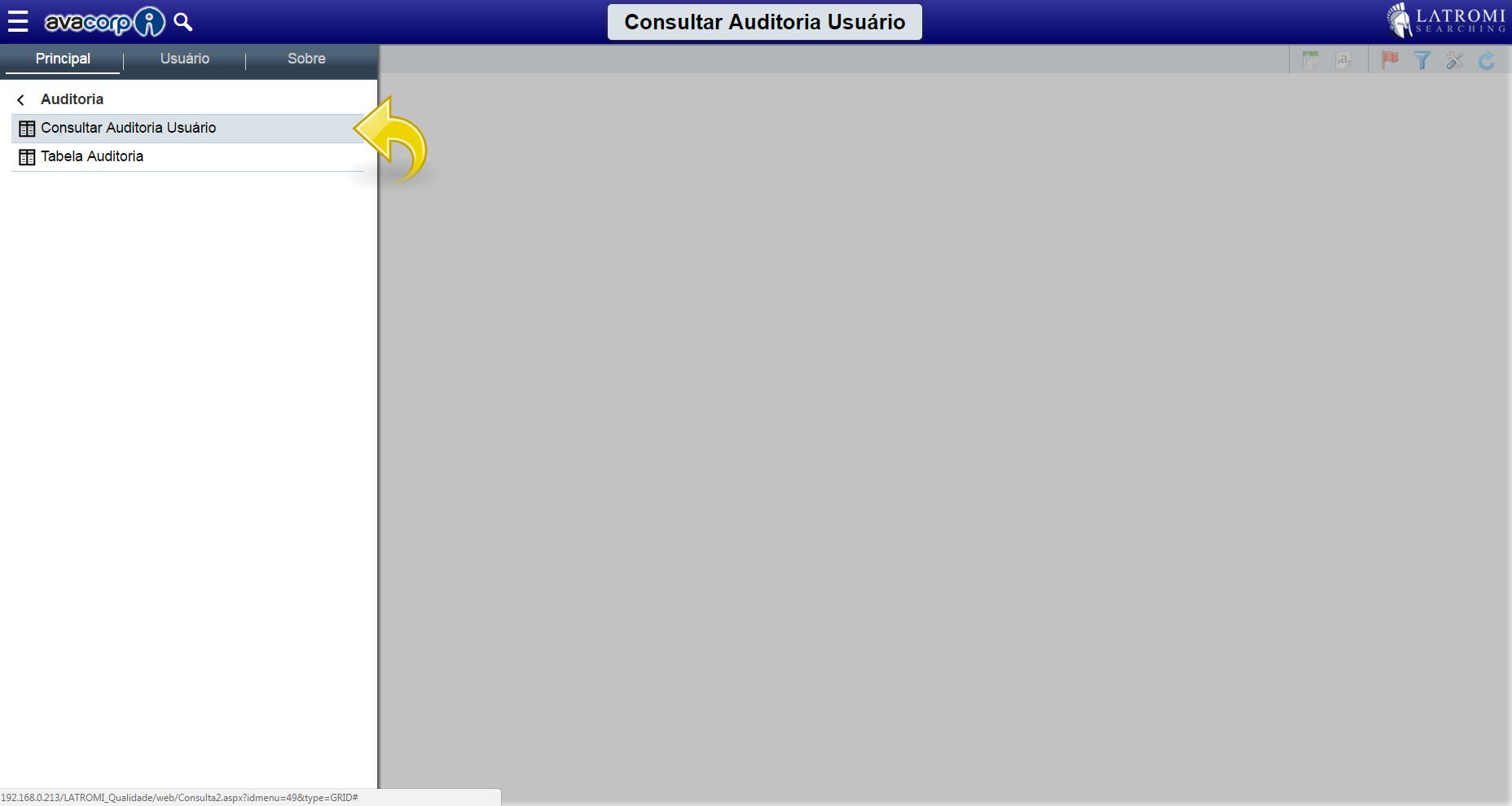 Consultar Auditoria Usuário