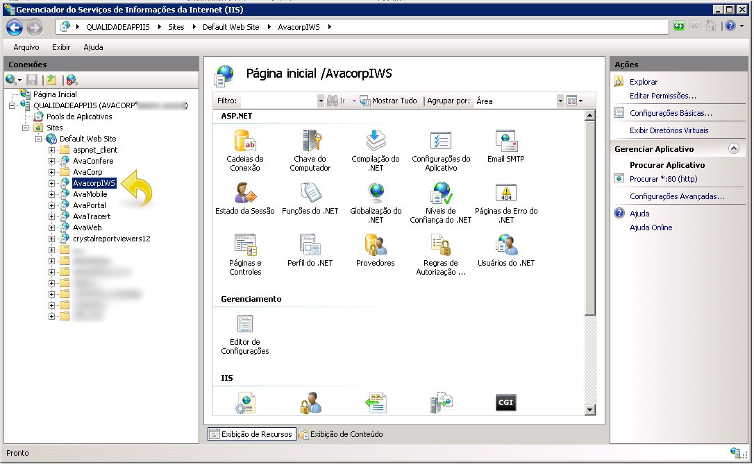 Aplicação do AvacorpIWS no IIS.